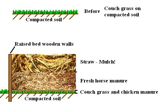 sheet mulching diagram