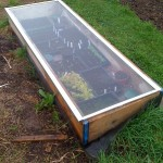 shower door coldframe